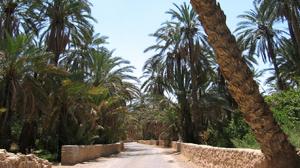 السياحة الصحراوية