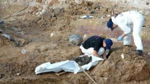 اكتشاف مقبرة جماعية للمسلمين بالبوسنة