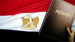مصر: لجنة الخمسين تقرر إلغاء مجلس الشورى بالدستور الجديد