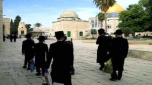 مستوطنون يهود وحاخامات يقتحمون المسجد الأقصى ويعتقلون 12 فلسطينيا