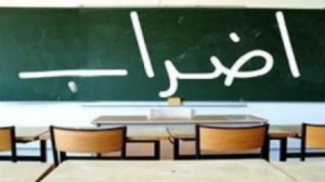 الأساتذة الجامعيين