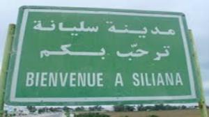 سليانة