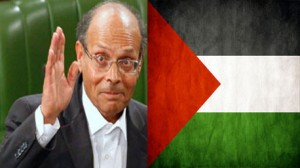 المرزوفي وفلسطين