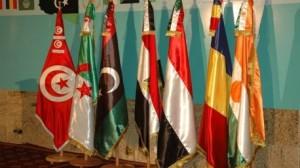 دول جوار ليبيا