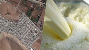 حجز آلاف اللترات من الحليب مخلوطة بالأومو في منوبة