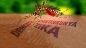 فيروس زيكا يظهر في جنوب إفريقيا