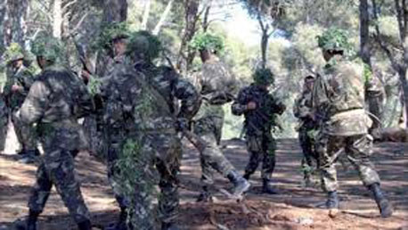 الجزائر + تنظيم القاعدة