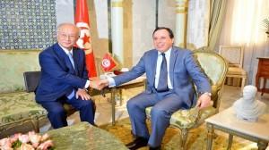 وزير الخارجية يستقبل المدير العام للوكالة الدولية للطاقة الذرية