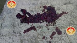 إصابة إرهابي بالكاف: أخذ عينة من دماءه للتعرف على هويته