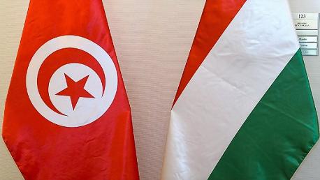 تونس المجر