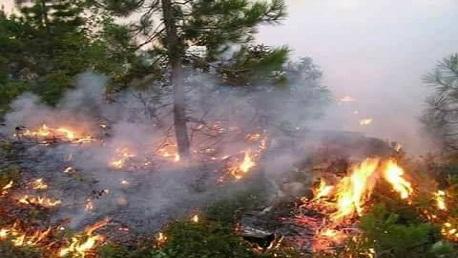 الداخلية: تقدّم عمليات إطفاء ما تبقى من الحرائق بهذه الولايات
