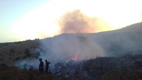 باجة: اندلاع حريقين جديدين على الحدود مع بنزرت