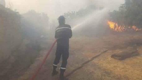 إخماد كافة الحرائق المندلعة بغابات سليانة وزغوان والقيروان