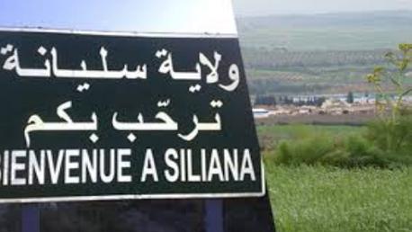 ولاية سليانة