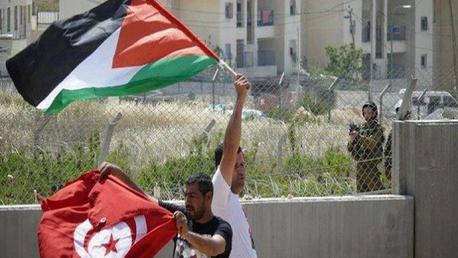 تونس و فلسطين