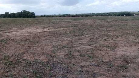 صفاقس: الدّولة تسترجع أكثر من 6 هكتارات من أراضيها المنهوبة