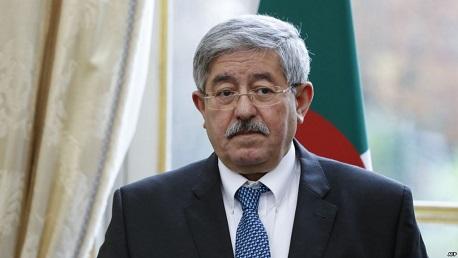 أحمد أبو يحيي