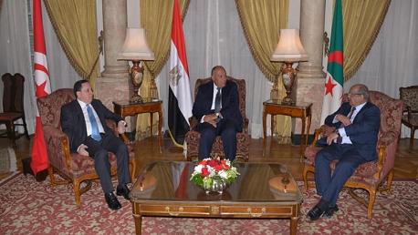 وزراء خارجية تونس والجزائر و مصر