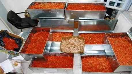 حجز 671 كلغ من مادة المرجان قيمتها المالية 06 مليون دينار