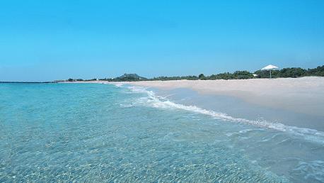 سباحة شاطئ