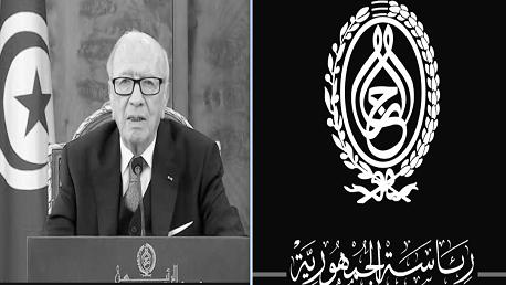 رئاسة الجمهورية تونس