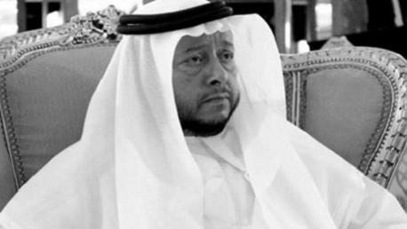 الشيخ سلطان بن زايد آل نهيان ممثل رئيس الدولة  في الإمارات
