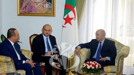الجزائر وتركيا تتفقان على بذل كل الجهود لوقف إطلاق النار في ليبيا