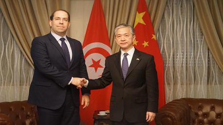 الشاهد يؤكد تضامن ودعم تونس للصين في مكافحة فيروس كورونا