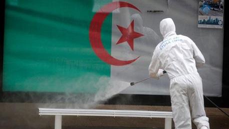 الجزائر كورونا