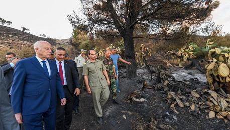 رئيس الجمهورية في زيارة إلى جبل عمدون من ولاية باجة
