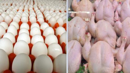 بيض ولحم دجاج