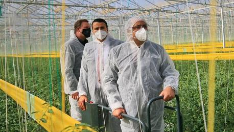رئيس الحكومة هشام مشيشي يزور مشروع فرحة الصحراء المختص في انتاج الطماطم الجيوحرارية المنجز في نطاق شراكة تونسية هولندية بمنطقة شانشو بالحامة من ولاية قابس