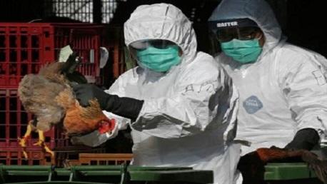 """الصين تُسجّل أول إصابة بشرية بسلالة """"إتش 10 إن 3"""" من إنفلونزا الطيور"""